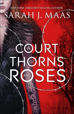 a-court-of-thorns-and-roes