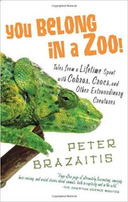 you belong in a zoo
